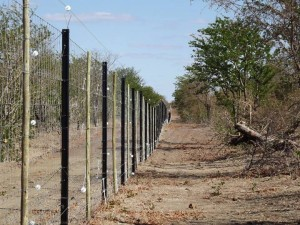 An electric fence separating a national park from the community. A return to fortress style conservation?